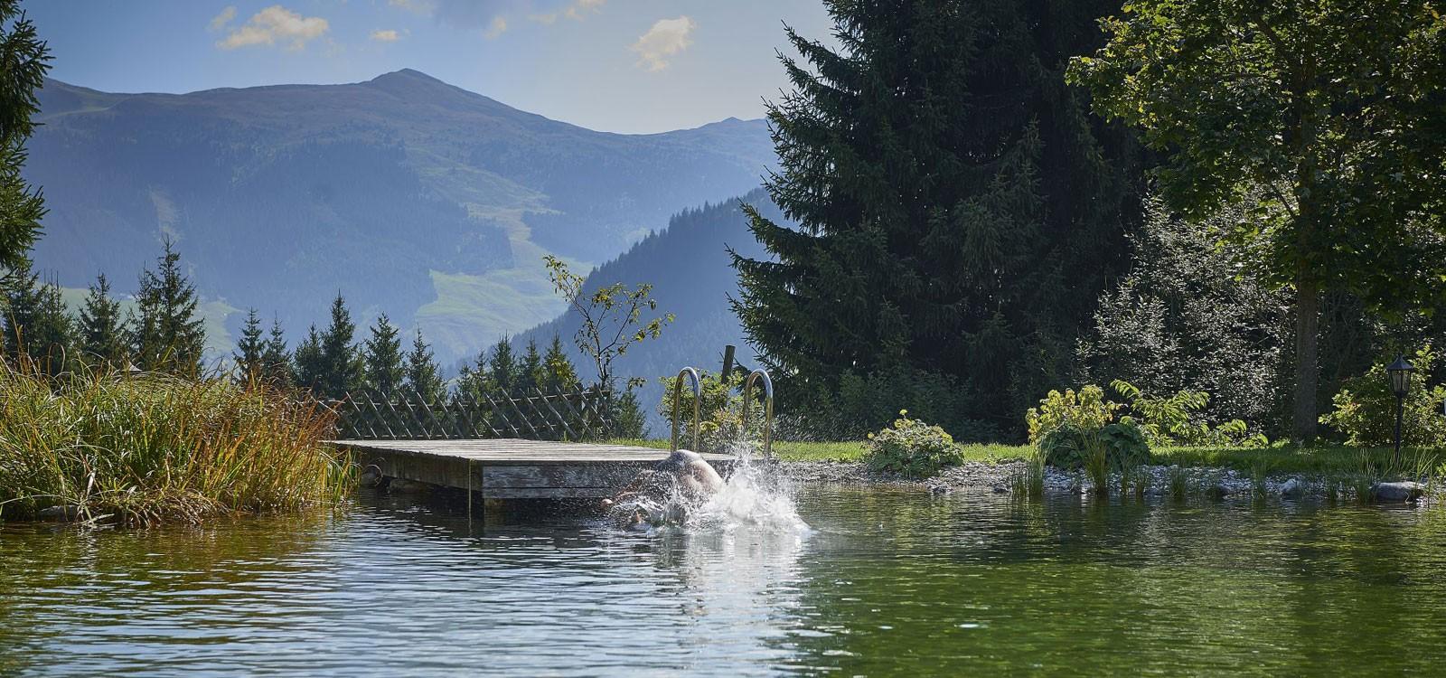 Sprung in den Teich
